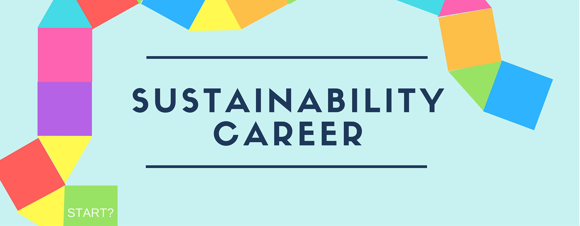 sustainability job experience